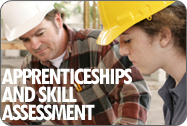 Apprenticeships and Skill Assessment